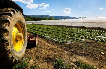 Pagamenti per impegni agro climatico ambientali