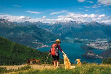 Iscrizione all'Elenco regionale dei Rifugi Alpinistici e dei Rifugi Escursionistici