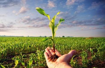 Pagamento compensativo per le zone agricole natura 2000
