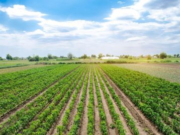 Bando   Azione regionale volta alla riduzione delle emissioni prodotte dalle attività agricole