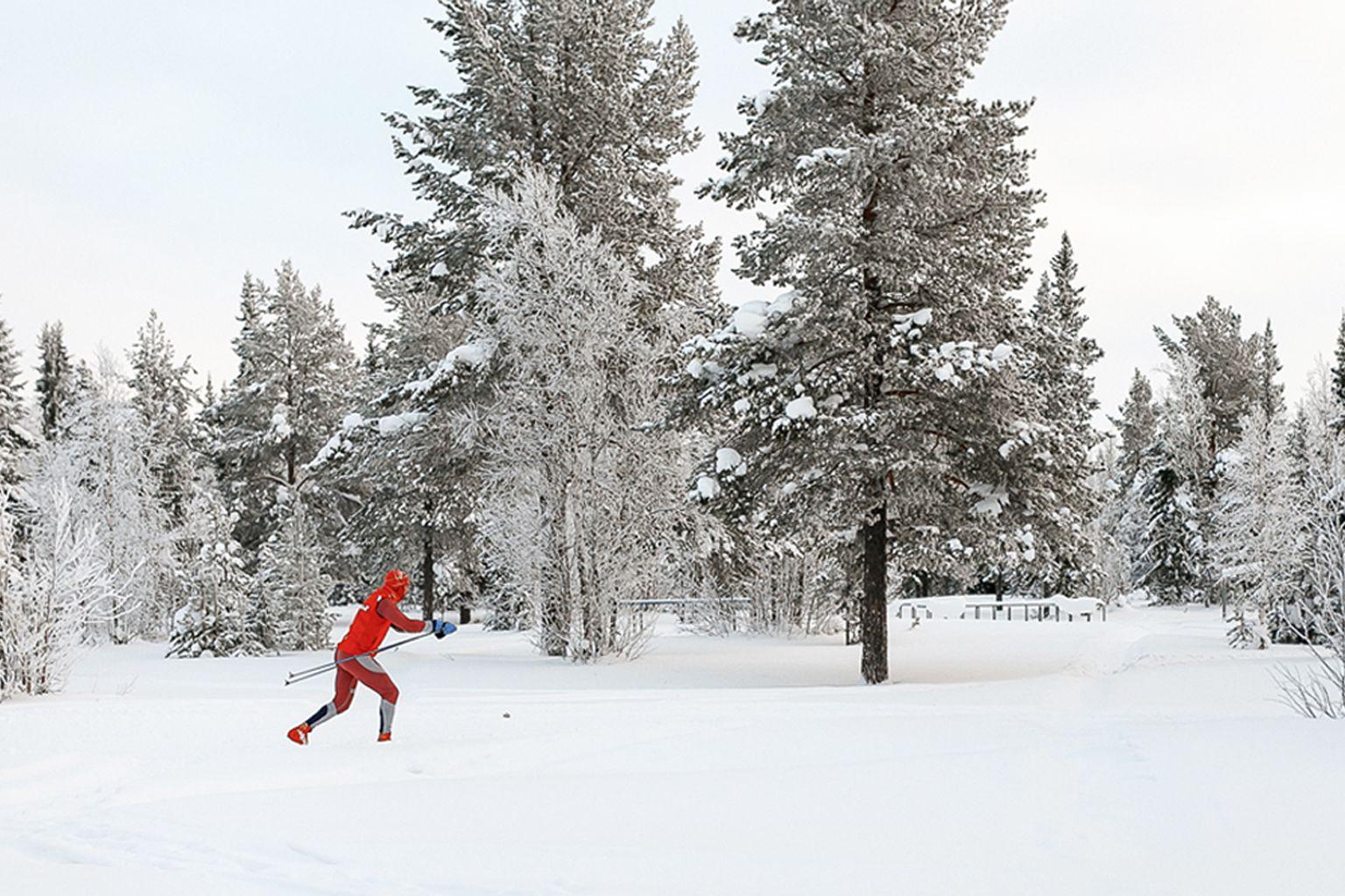 Iscrizione agli esami di abilitazione alla professione di maestro di sci di fondo anno 2020