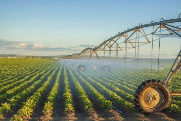 Assegnazione di contributi regionali a favore dei consorzi di bonifica per l'installazione di misuratori sulle derivazioni di acque ad uso irriguo