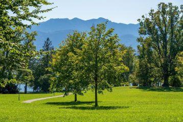 Infrastrutture verdi a rilevanza ecologica e di incremento della naturalità - 2021
