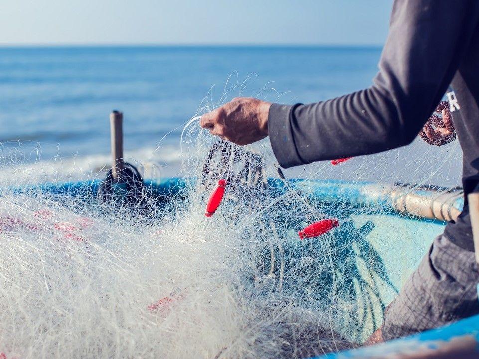 Concessione delle agevolazioni a favore dei pescatori professionisti danneggiati dall'emergenza COVID-19