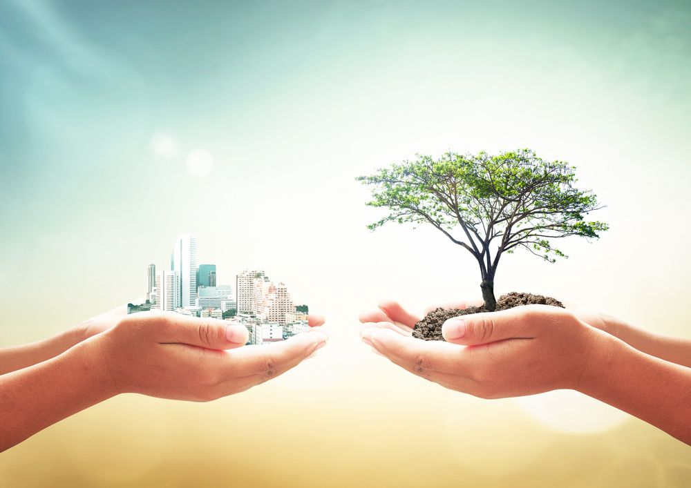 FEC 10/2021Richiesta di preventivo per acquisizione servizio di assistenza tecnica per procedimento di valutazione ambientale strategica (VAS) e di valutazione di incidenza (VIC) del Programma regionale ENERGIA AMBIENTE E CLIMA (PREAC)