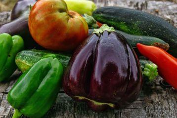 Misura 11 «Agricoltura biologica» per l'anno 2021